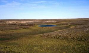 Полуостров Ямал: природно-климатические условия